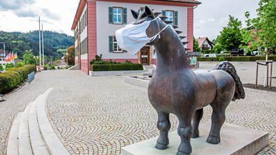 Man muss kein Esel sein, um die Maskenpflicht kritisch zu sehen. DIe Blanko-Atteste eines Arztes aus Hessen sind aber am Ende wohl eine Eselei.