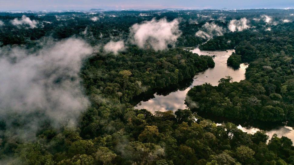 Blick auf das gigantische Flusssystem des Amazonas; Drohnenaufnahme.