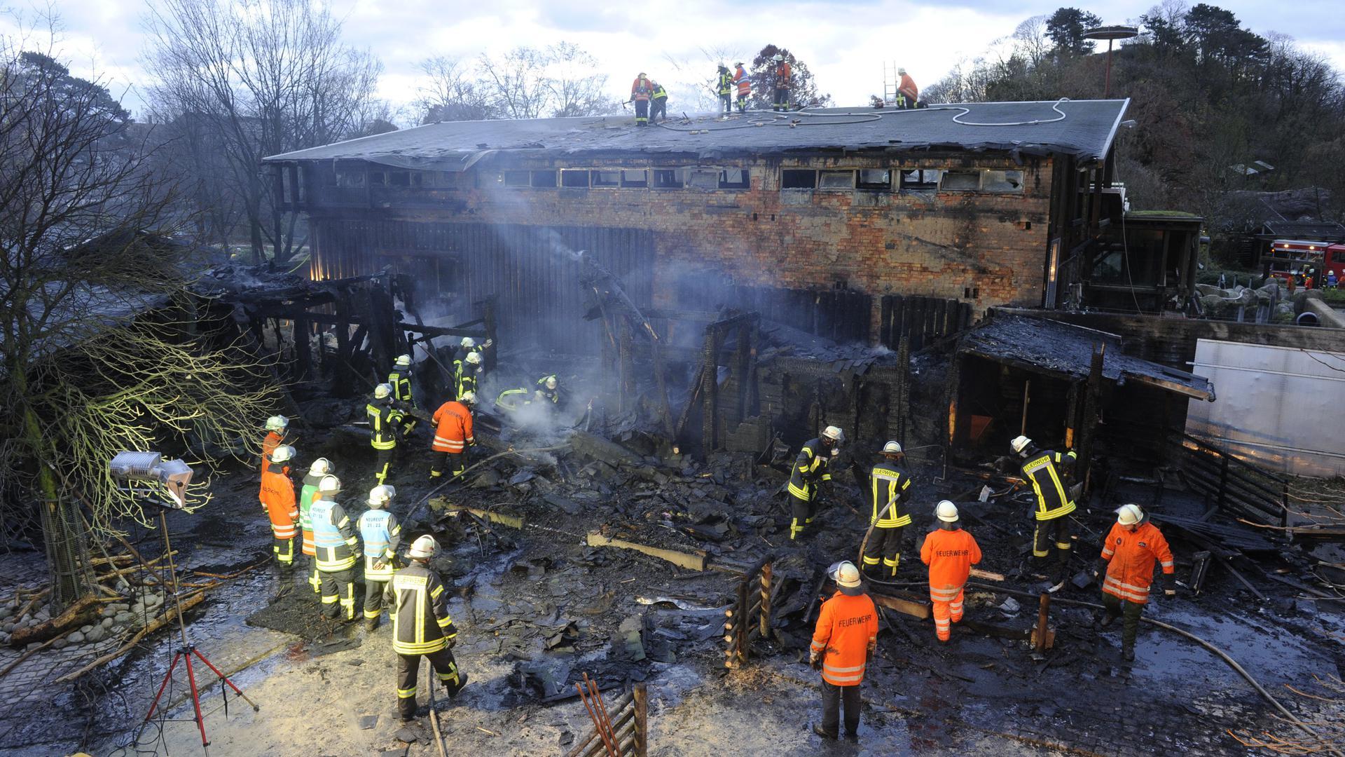 Einsatzkräfte der Feuerwehr löschen am Samstag (13.11.2010) im Karlsruher Zoo das Elefantenhaus. Bei dem Brand sind in der Nacht zum Samstag zahlreiche Tiere ums Leben gekommen. Nach Polizeiangaben war das Feuer aus unbekannter Ursache im Streichelzoo ausgebrochen. Die 25 Tiere dort verbrannten. Die Flammen griffen auch auf das Elefantenhaus über. In einer dramatischen Rettungsaktion konnten die Elefanten und die dort untergebrachten Flusspferde gerettet werden. Sie sind jetzt im Außengehege untergebracht. Foto: Uli Deck dpa/lsw ++ +++ dpa-Bildfunk +++