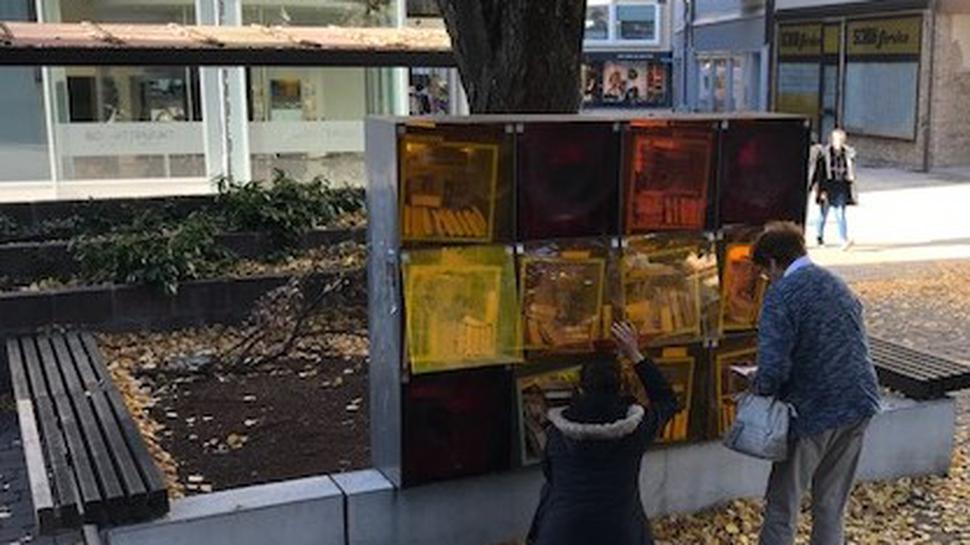Die Bücherboxen in Bruchsal.