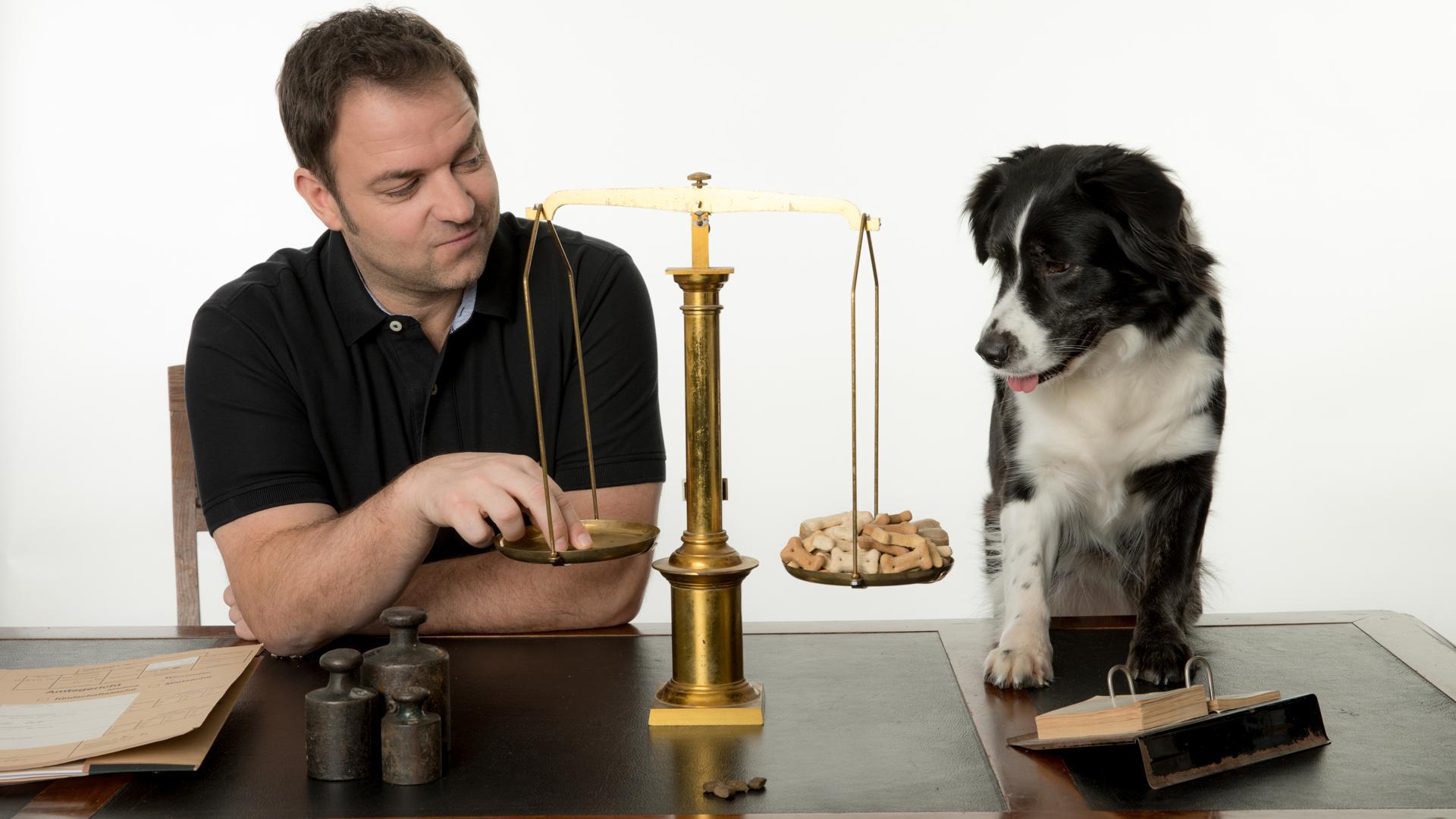Hundeprofi Martin Rütter und seine Emma, ein Australien-Shepherd-Mix.