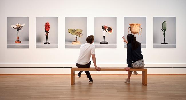 """In der Staatlichen Kunsthalle Karlsruhe werden Teile der Ausstellung """"Inventing Nature - Pflanzen in der Kunst"""" gezeigt."""