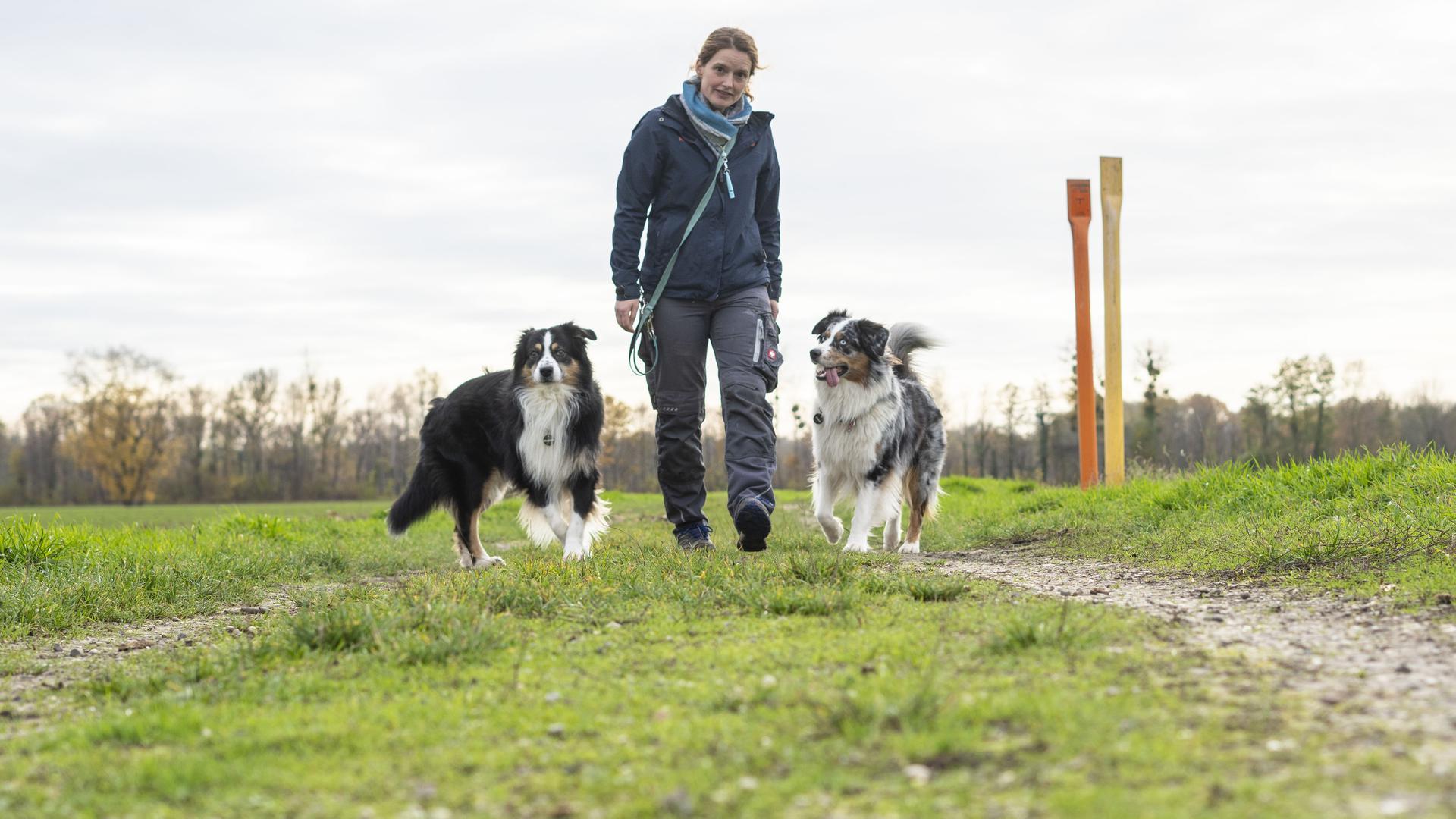 Barft aus Liebe: Die Karlsruherin Rieke Kokenge ist überzeugte Vegetarierin - und füttert ihre Hunde ebenso überzeugt mit rohem Fleisch und Innereien.