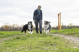 Barfing aus Liebe: Die Karlsruherin Rieke Kokenge ist überzeugte Vegetarierin - und füttert ihre Hunde ebenso überzeugt mit rohem Fleisch und Innereien.