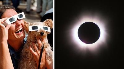 Eine Frau und ein Hund schauen durch eine spezielle Brille auf die sich verfinsternde Sonne.
