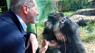 Zoochef Clemens Becker und Benny, der Schimpanse und älteste Zoobewohner Karlsruhes.