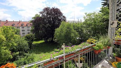 Oase mitten in der Stadt: Blick in den Garten der alten Hauptfeuerwehrwache in der Ritterstraße. Mittendrin: eine prächtige Rotbuche.