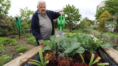 Wolfgang Walter in seinem Kleingarten.