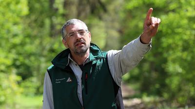 Wildtierbeauftragter Stefan Lenhard im Wald.