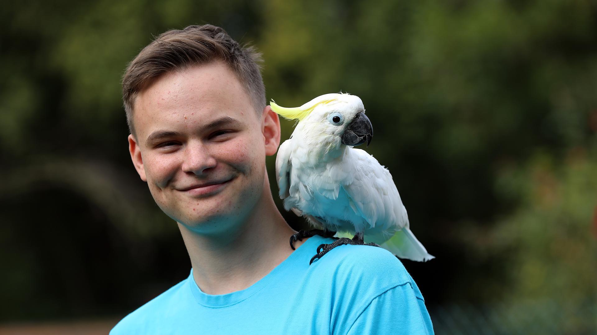 Julian Meggers mit Gelbhaubenkakadu Tini