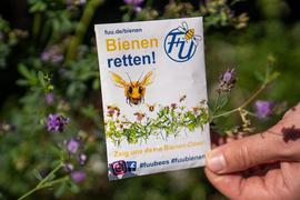 Eine Blühmischung für Bienen. Speziell in Billigmischungen sind oft Samen enthalten, die weder nachhaltig die Artenvielfalt fördern - noch in die Region gehören.