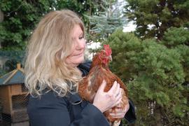 Das große Los gezogen: Die Henne Feddie stammt aus einer Legebatterie. Normalerweise hätte sie ihr zweites Jahr nicht erlebt, doch Lisa Walch päppelte sie mit viel Engagement wieder auf.