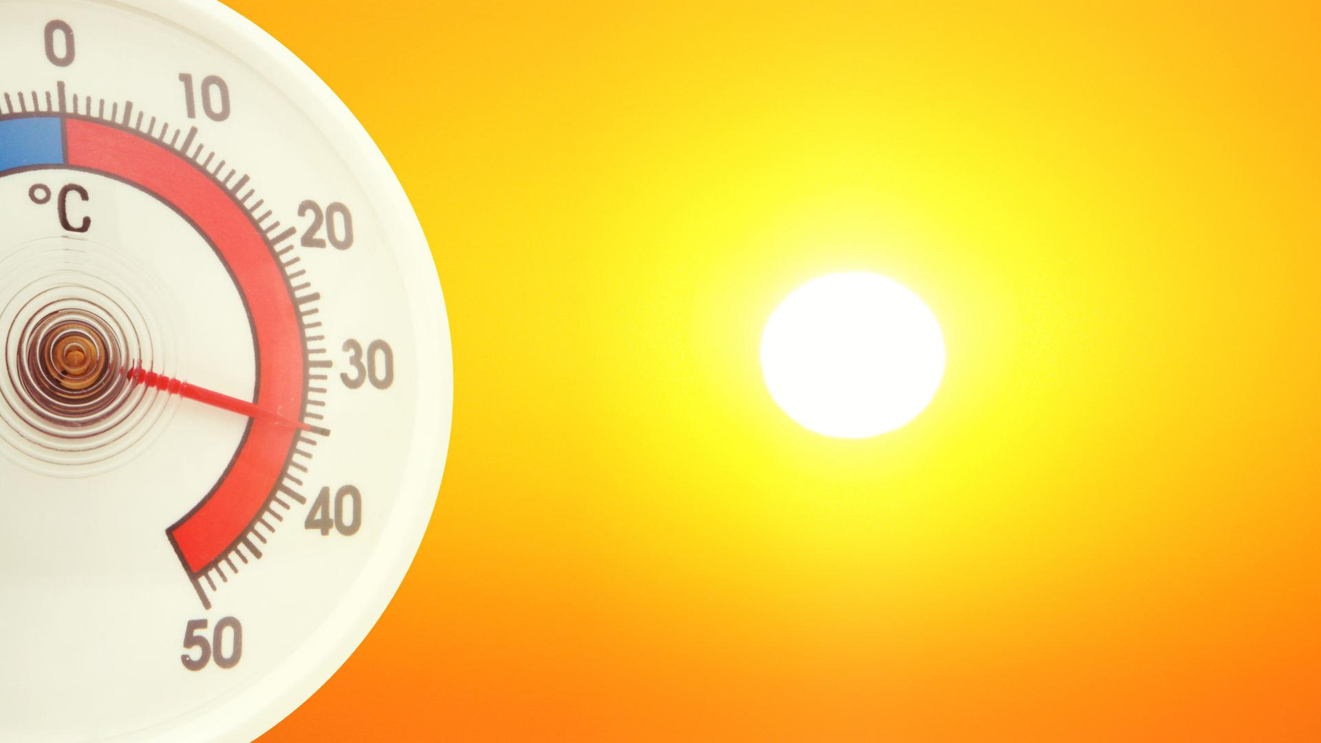 Die Region im Hitzestress: Bis 2050 wird die Zahl der Tage, an denen das Thermometer auf über 30 Grad klettert, deutlich zunehmen. Das Jahr 2003 wäre dann kein Ausnahmefall, sondern normal. In Karlsruhe könnte das Leben ziemlich ungemütlich werden.
