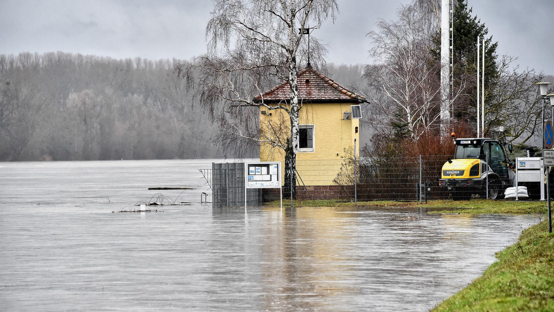 30.01.2021 Hochwasser bei der Rheinbrücke Maxau
