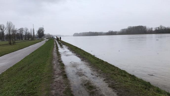 Menschen spazieren auf einem Damm des Rhein bei Karlsruhe.
