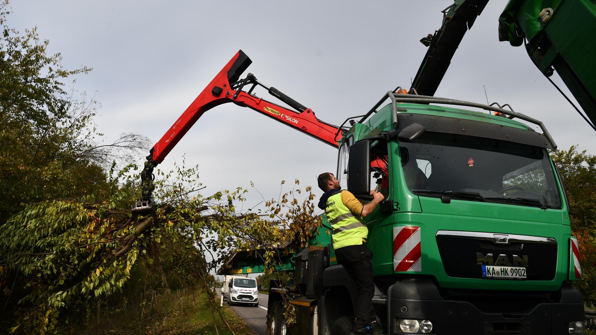 Ein Greifer packt abgeschnittene Bäume am Wegrand und führt sie in den Holzhacker.