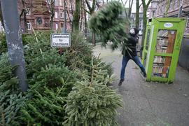 Ein Mann wirft seinen Christbaum auf die Sammelstelle