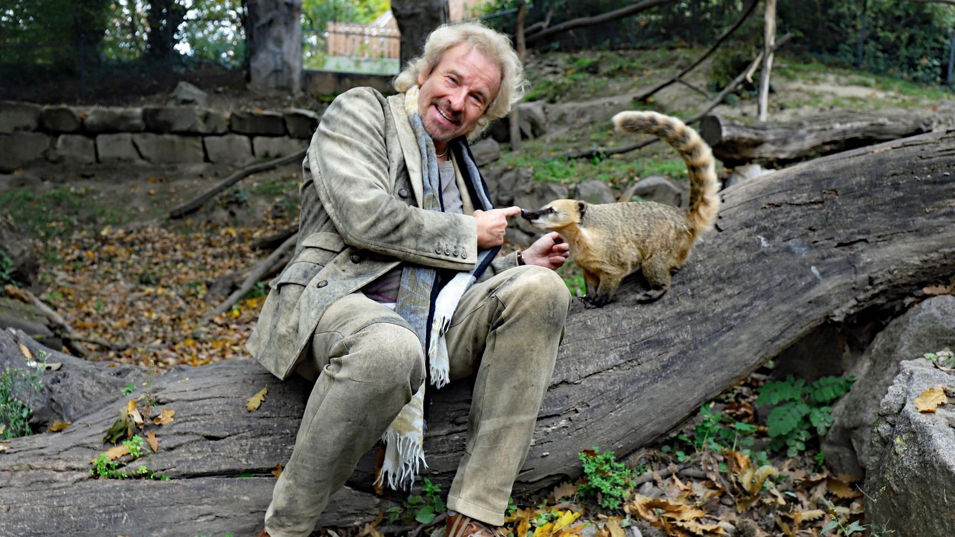"""Thomas Gottschalk und Nasenbär """"Thommy"""" sitzen im Karlsruher Zoo auf einem Baumstamm."""