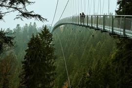 Ein Wanderer-Pärchen steht im Herbst auf der Hängebrücke Wildline auf dem Bad Wildbader Sommerberg.