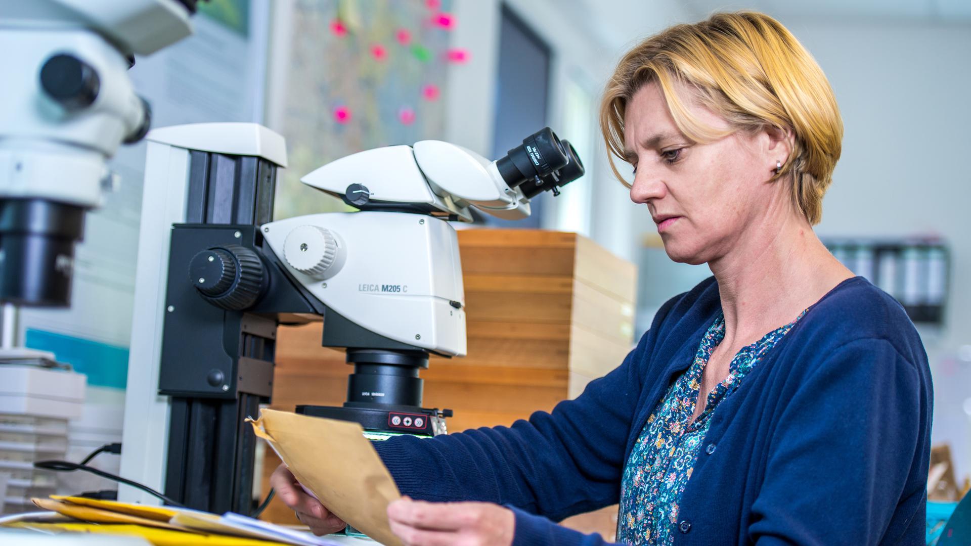 Blonde Frau am Mikroskop