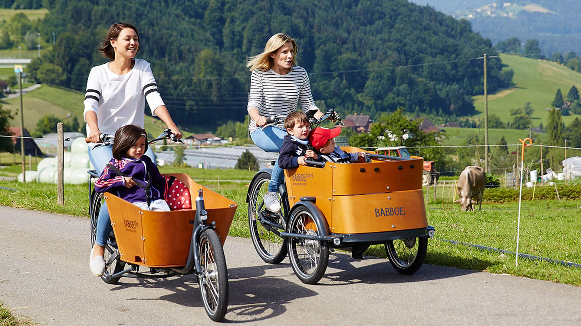 Es ist schon lange überfällig, dass in ländlich geprägten Regionen wie der Hardt mehr Lastenräder unterwegs sind. (Symbolfoto)