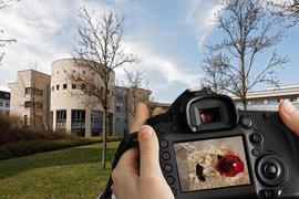Im Max-Rubner-Institut in der Karlsruher Oststadt werden Versuche an Menschen, an technischen Modellen und auch an Tieren durchgeführt.