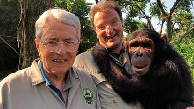 Elstner, Reinschmidt, Schimpanse