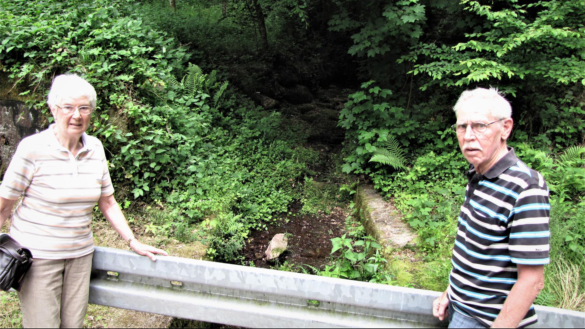 Wanderung auf dem Heuweg: Judith Giss (links) und Ulrich Dümmler stehen bei Spessart vor der Eselsklinge, die hier auf ihrem Weg ins Albtal den Weg unterquert.