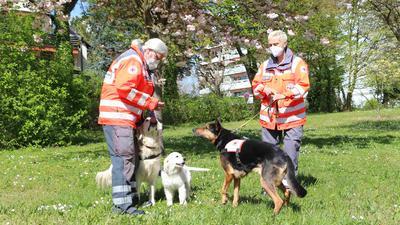 Rettungshunde Ettlingen