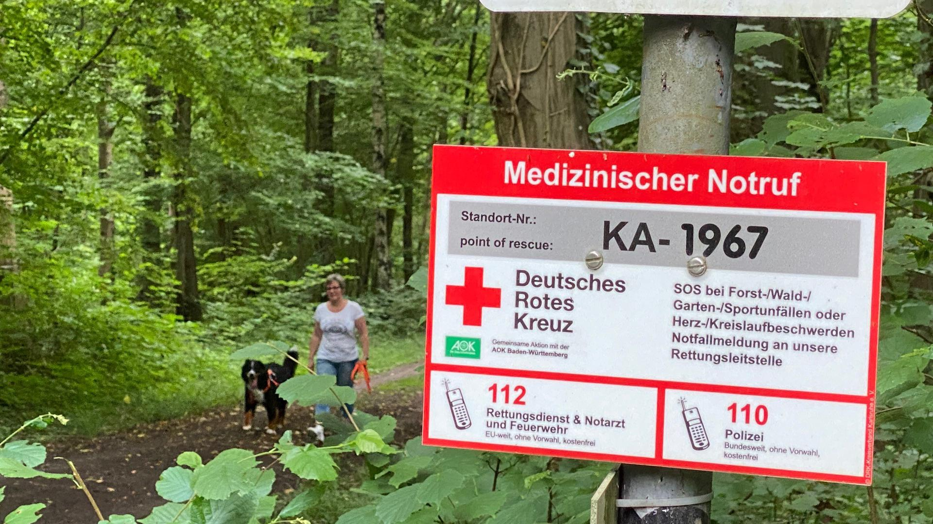 Hundehalterin im Wald
