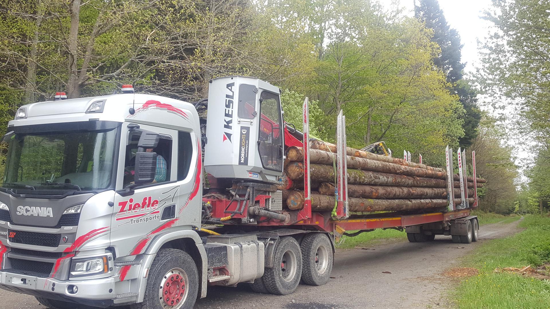 Lkw beladen mit Holzstämmen