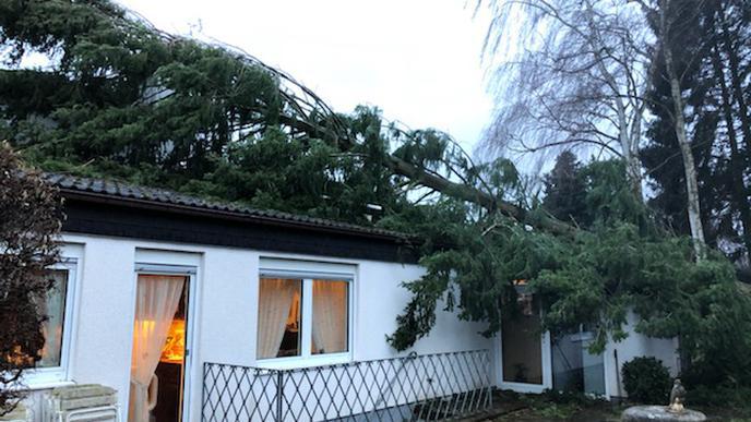 In Karlsbad-Auerbach ist am Montag ein Baum auf ein Haus gefallen. Glücklicherweise wurde dabei niemand verletzt.