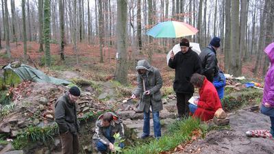 Archäologische Grabungen im Wald