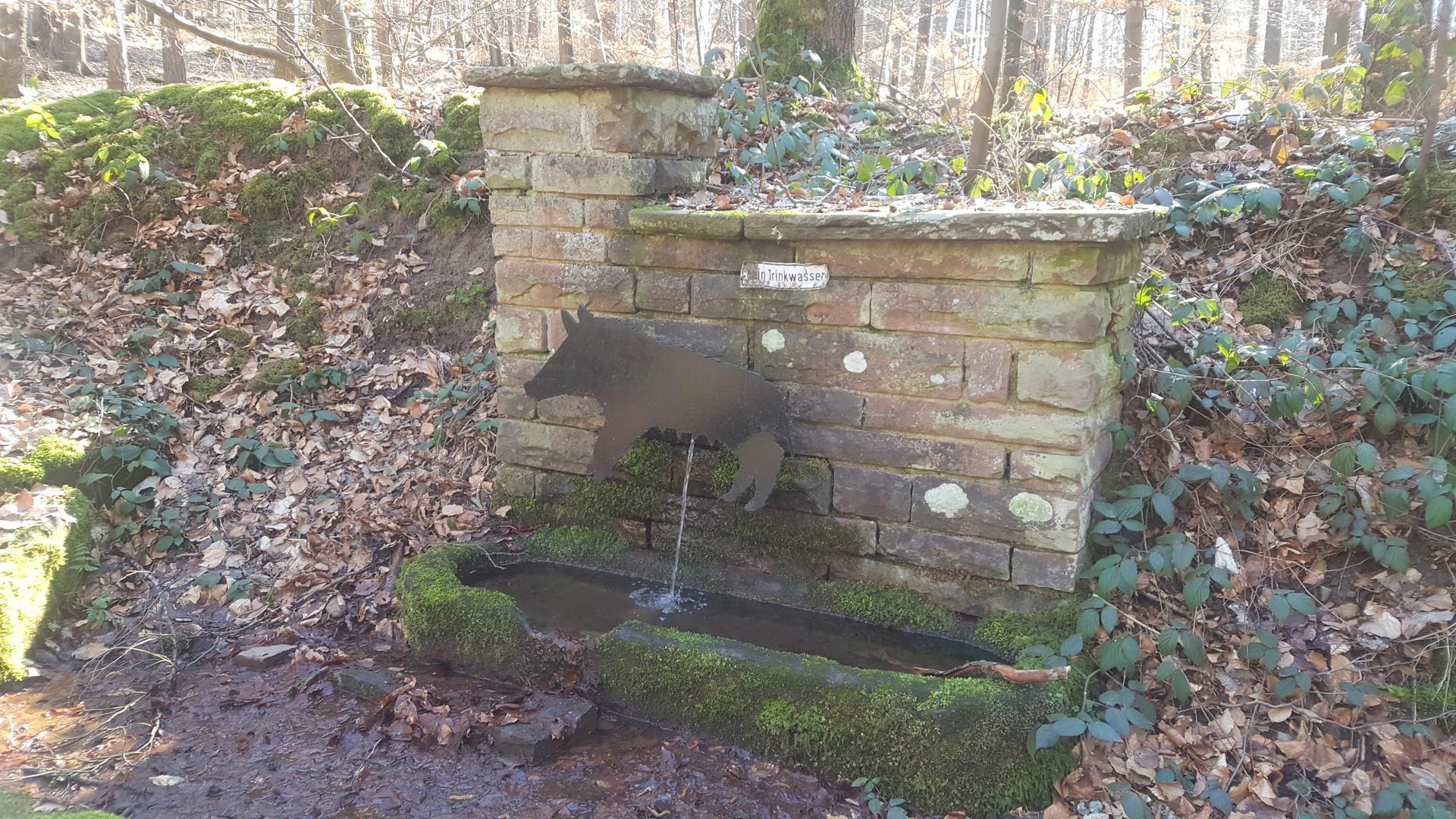 Der Saubrunnen erinnert an die Schweinemast im Burbacher Wald