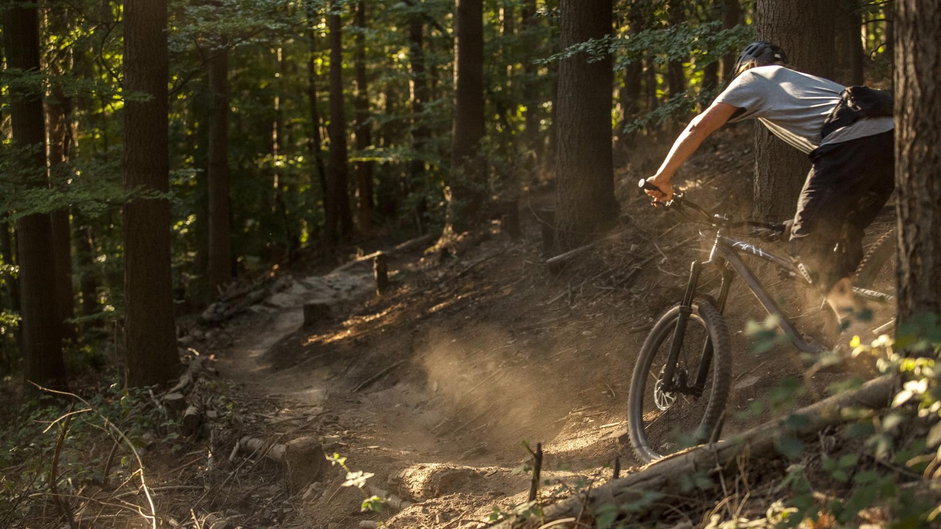 Mountainbiking im Wald
