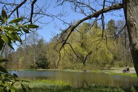 Ein Idyll: der See im Kurpark von Waldbronn.