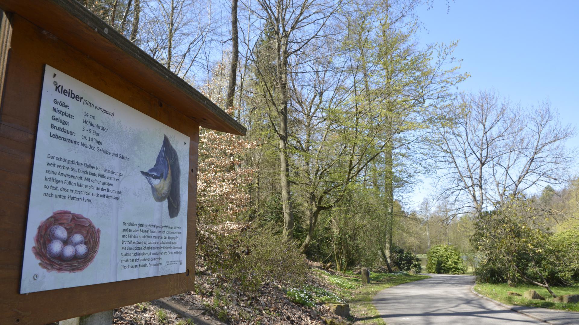 Wissen über Kleiber und Co: Ein Lehrpfad informiert im Kurpark Waldbronn über die Vogelwelt.