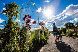 Kleingartenanlage am Reitschulschlag