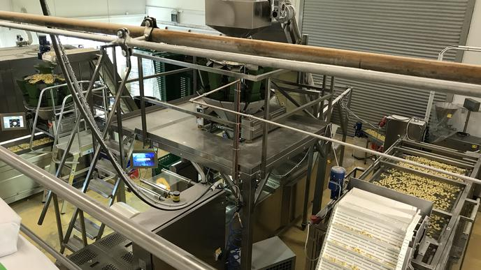 In der Produktionshalle entstehen die Nudeln, vom Teig bis sie verpackt werden.