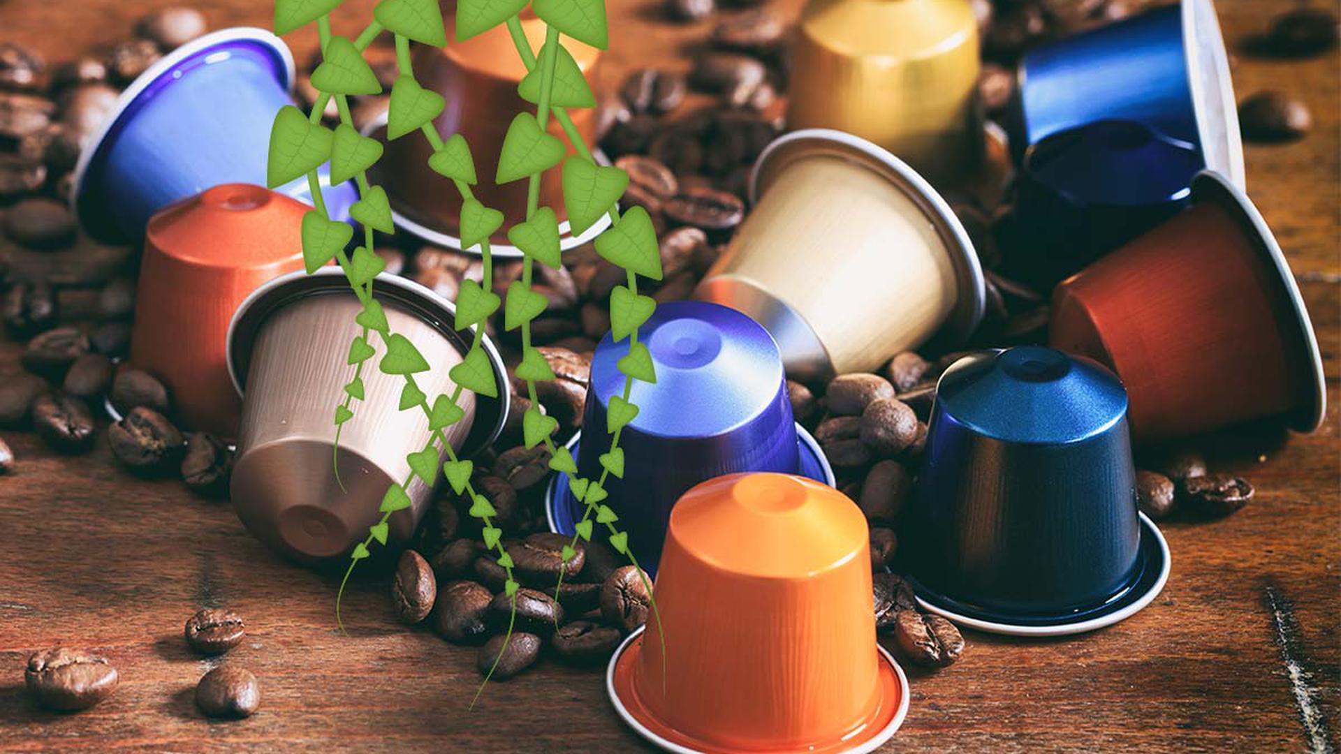 Objekte des Aufruhrs: Kaffeekapseln.