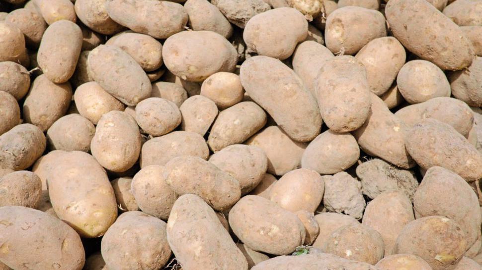 Es müssen nicht immer nur Pommes Frites sein: Aus Kartoffeln kann man auch eine leckere Suppe zaubern.
