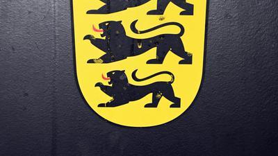 Urteil: Das Amtsgericht Karlsruhe hat einem Rapper eine achtmonatige Bewährungsstrafe aufgebrummt. Er hatte in einem Video mit einer Schusswaffe und einem vermeintlichen Molotow-Cocktail hantiert.