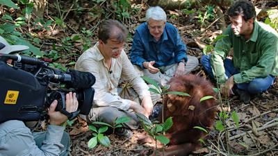 Reinschmidt, Elstner und Willie Smits in Indonesien auf einer Station mit Orang-Utans