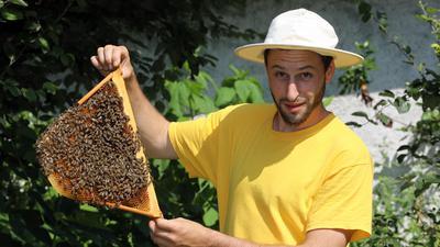 Ein Imker zeigt seine Bienen