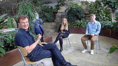 Zoodirektor Matthias Reinschmidt sitzt mit Janika Dehmer und Kai Hochstuhl im Exotenhaus und hat einen blauen Papagei auf dem Arm.