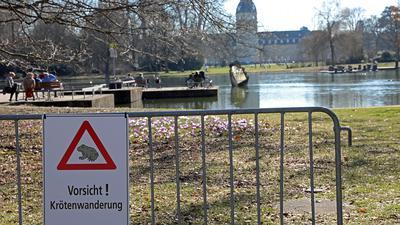 Achtung Kröten: Zum Schutz der Amphibien sind die Besucher des Schlossgartens zur Rücksicht aufgerufen; denn an warmen Märztagen hüpfen die Amphibien zum See.