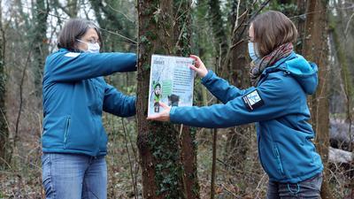 © Jodo-Foto /  Joerg  Donecker// 13.01.2021 Naturschutzzentrum / Tafeln fuer einen Lehrpfad werden angebracht / Foto: li: Anja Prei§, re. Anne-Marie Claus,                                                                -Copyright - Jodo-Foto /  Joerg  Donecker Sonnenbergstr.4  D-76228 KARLSRUHE TEL:  0049 (0) 721-9473285 FAX:  0049 (0) 721 4903368  Mobil: 0049 (0) 172 7238737 E-Mail:  joerg.donecker@t-online.de Sparkasse Karlsruhe  IBAN: DE12 6605 0101 0010 0395 50, BIC: KARSDE66XX Steuernummer 34140/28360 Veroeffentlichung nur gegen Honorar nach MFM zzgl. ges. Mwst.  , Belegexemplar und Namensnennung. Es gelten meine AGB.
