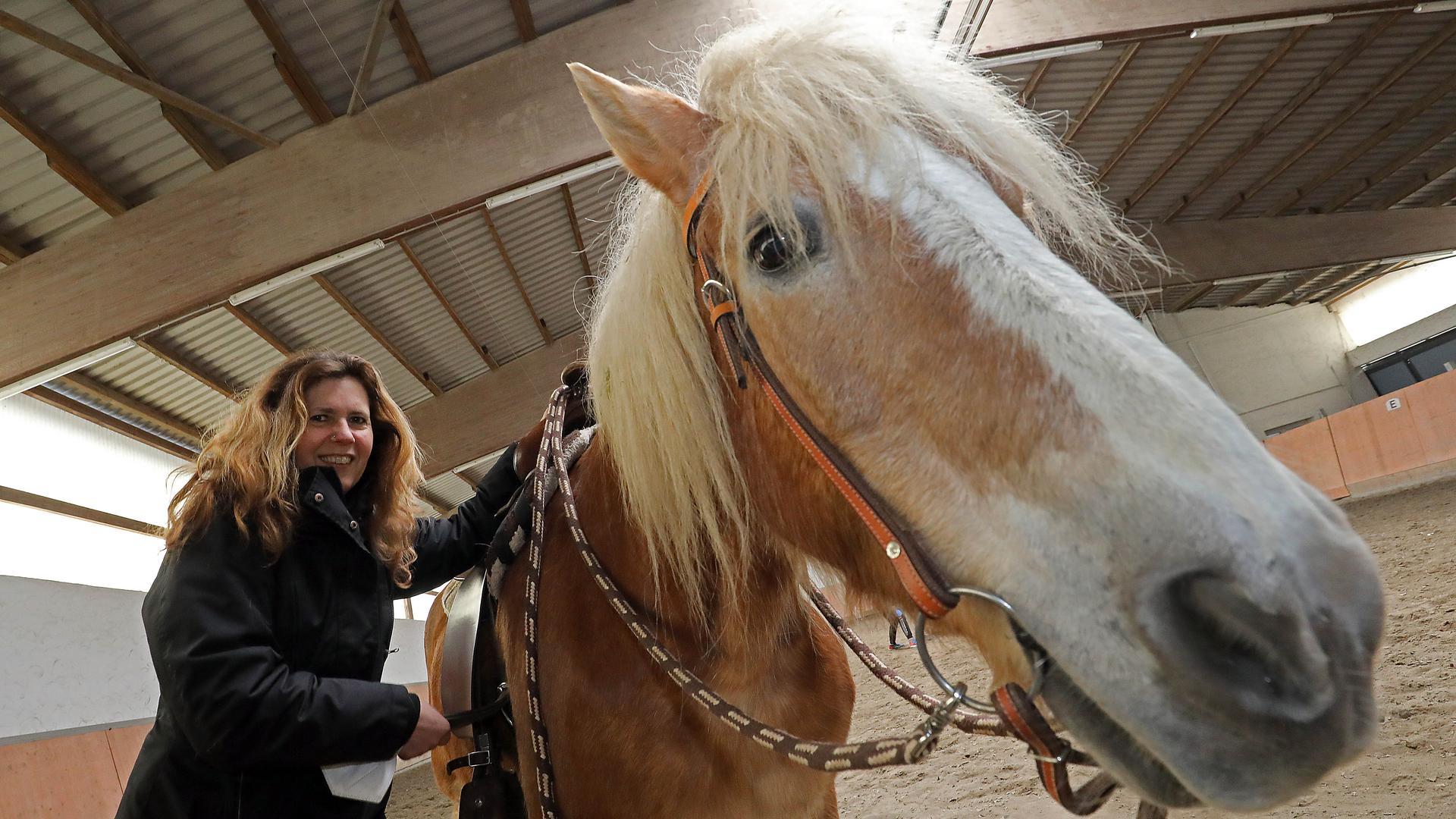Auf pferd frau England: Universität
