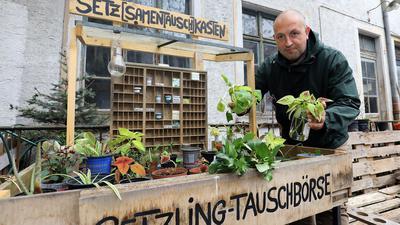 Mann steht vor Pflanzen