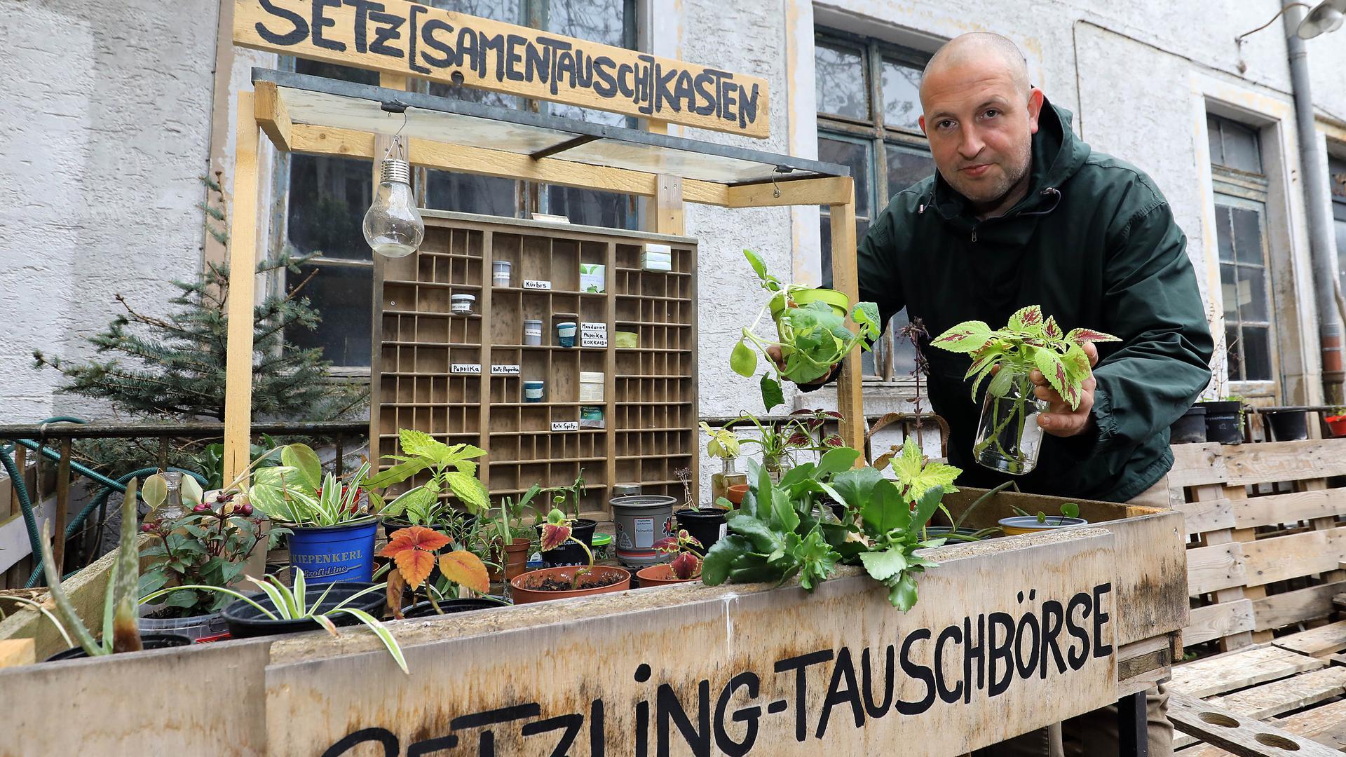 Mann steht vor einem Regal mit Pflanzen